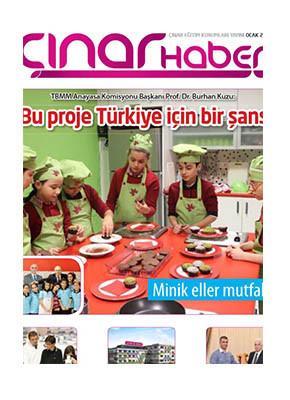 Çınar Haber 2013'e ulaşmak için tıklayınız.